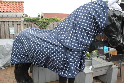 Zoekt u mooie goedkope paardendekens?